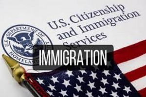 immigrationnn