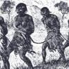 transatlantic-slave-trade-featured-713x330