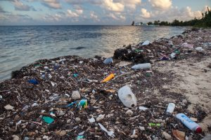 Governments moving to ban plastics and Styrofoam