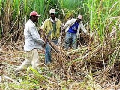 Sugar workers to receive remainder of severance payment
